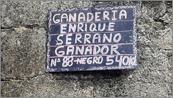 Tercer toro Salvador 2016 - 09/08/2016